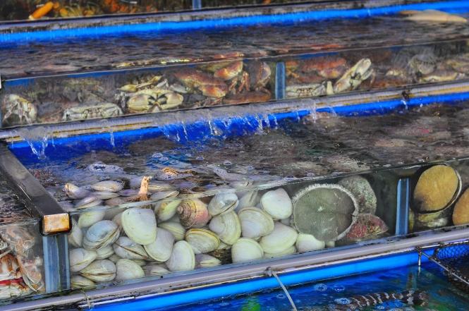 Sai Kung Seafood.