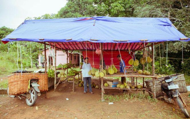 Street Food - Durian.